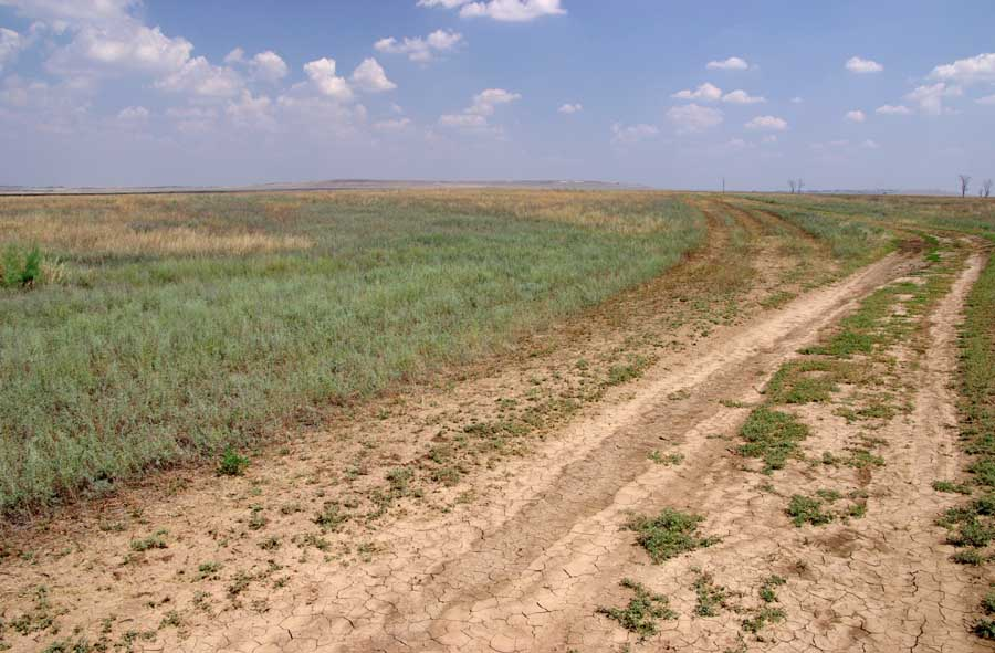 западно сибирская таблицу заполните равнина русская